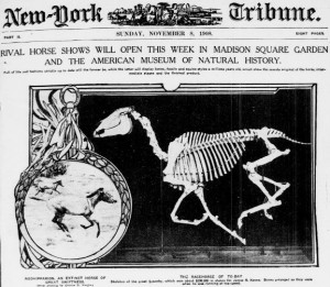 Front page of the New York Tribune, 8 November 1908